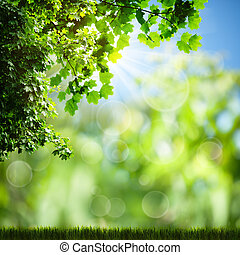 Sunny day on the meadow. Abstract natural backgrounds