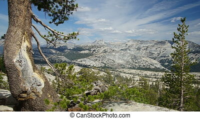 Panoramic view of Sierra-Nevada - Yosemite, CA, USA
