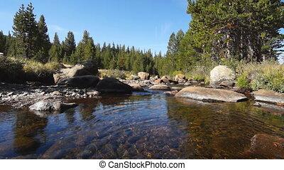 Creek in Yosemite