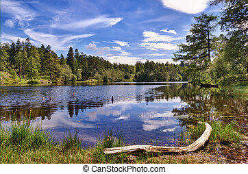Tarn Hows - A view of Tarn Hows, a small lake in the English...