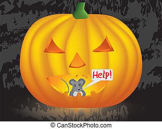 mouse inside Halloween pumpkin - mouse inside pumpkin crying...