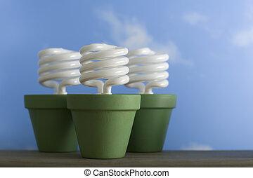 tres, CFL, brote, ollas