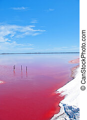 Strange colored Water at Pink Lake, Western Australia - Pink...