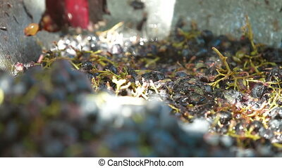 Homemade Winemaking - Homemade wine production - tread out...