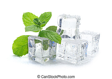 ice cubes and mint - ice cubes with mint leaf on white