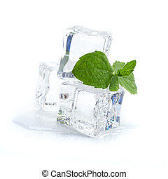ice cubes with mint