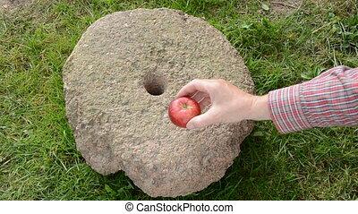 שים, שלושה, אדום, תפוחי עץ, millstone