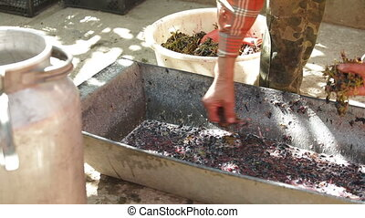 Home Winemaking - Homemade wine production - take out the...