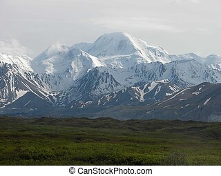 Denali National Park - AK - Alaska's Denali National Park is...