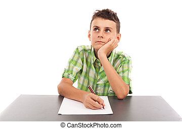 Portrait of a schoolboy doing his homework