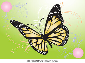 vector image of a butterfly - Digitally generated image of a...