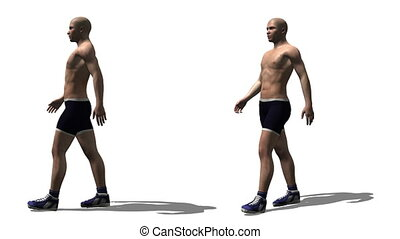 human body - walking man