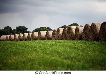 Straw Bales - rain clouds - straw bales in front of a sky...