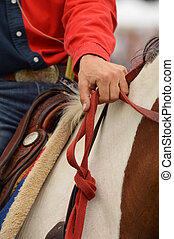 Western Riding - Detail of Western Riding Equipment