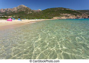 Corsica beach - clear mediterranean water in Arone beach,...