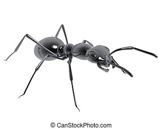 black ant - 3d black ant isolated on white background
