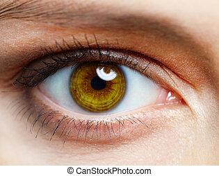 human, olho