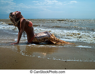 mermaid girl near the coast with a beautiful tail