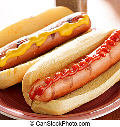 two hotdogs on a plate with ketchup and mustard.