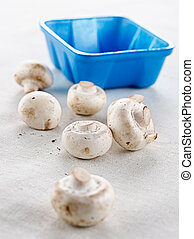mushrooms in a container