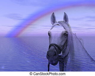 Horse in the rainbow