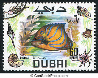 fish Blue angel - DUBAI - CIRCA 1969: stamp printed by...