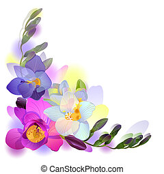 Postcard with freesia flowers - Vector greeting background...