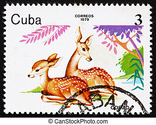 Postage stamp Cuba 1979 Deer, ZOO Animals