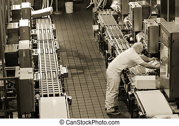 Production line - Factory production line in Oregon cheese...