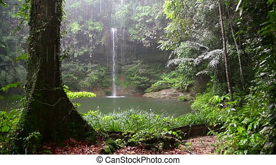Waterfall at borneo rainforest