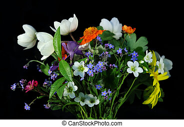 Bouquet of field flowers on a black background