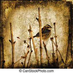 Sparrow Graphic/Illustration - Small bird perched on...