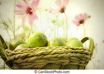 basket of figs in the garden of daisies