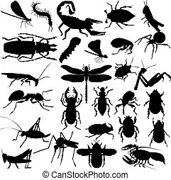 Silhouettes of insects - Big set of different insects and...