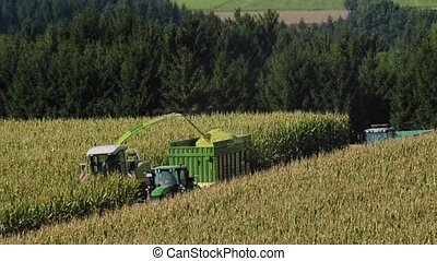corn harvest with thresher and tractor