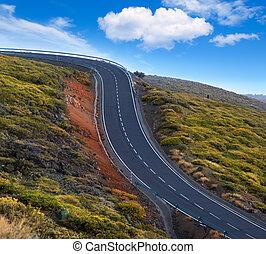 montagne, dangereux, courbes, enroulement, vert, route