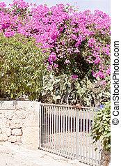 mediterranean brick entrance garden with pink flowers