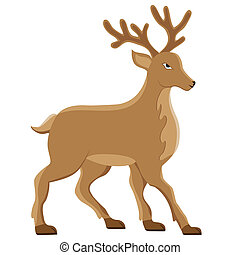 deer vector illustration isolated on white background