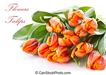 reddish orange tulips - bouquet of red tulips orange on a...