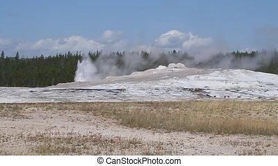 Geysers in yellowstone
