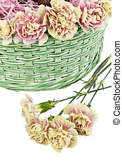 easter flowers - An image of an easter flowers on macro and...
