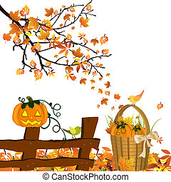 Autumnal design - Vector illustration of pumpkins on an...