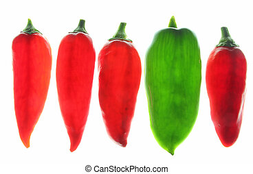 Sweet peppers (Capsicum annuum) - Red and green sweet...