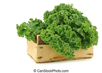 freshly harvested kale cabbage in a wooden crate on a white...