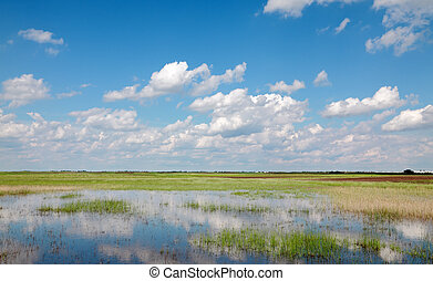 Landscape - Marsh with cultivated land in background and...