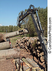 Lumber industry - Crane with jaws loading logs onto a stack