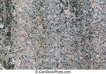 granite texture with moos