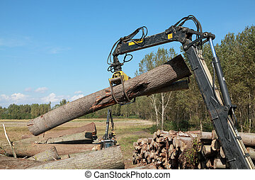 Wood exploitation - Crane with jaws loading logs onto a...