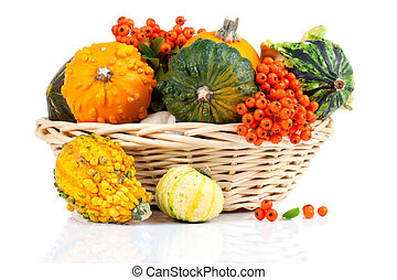 Autumn pumpkins in a straw basket, isolated on the white...
