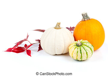 Autumn pumpkins with red leaves, isolated on the white...